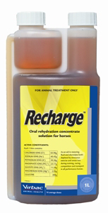 Recharge Horse 1L at Bowral Coop