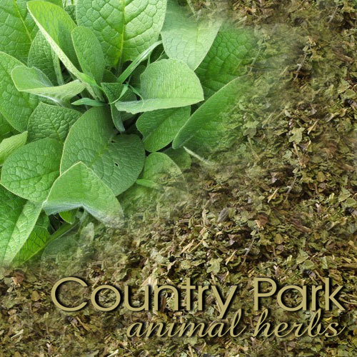 Comfrey Leaves 1kg at Bowral Coop